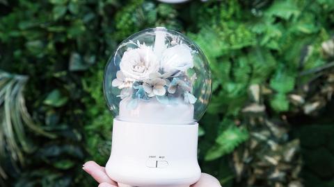 【葵芳好去處】葵芳DIY永生花加濕器 夢幻襯色設計親手自製專屬禮物