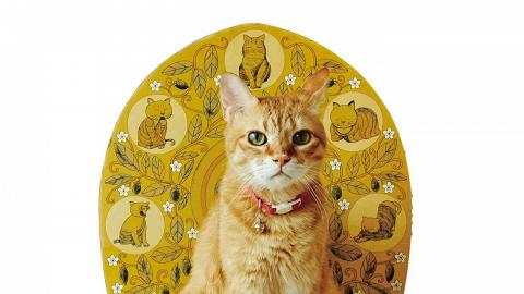 「喵星人」變身佛祖顯靈!金尊佛貓圖案設計「貓佛祖」蓮花座寵物床
