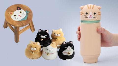 讓孩子愛上貓 流浪貓雜貨