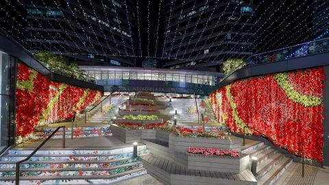 【聖誕好去處2019】葵芳聖誕花海燈飾登場!童話精靈小屋/夢幻階梯