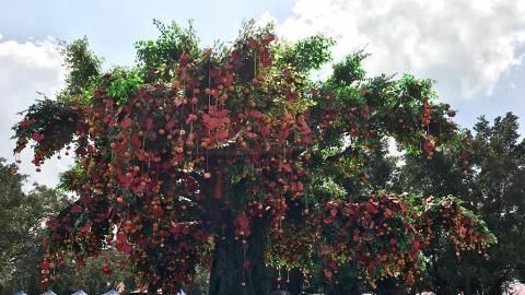 【新年好去處2020】大埔林村許願節2020回歸 美食嘉年華/交通安排/開放時間