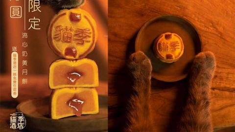 【月餅2020】貓奴中秋必買!「貓季酒店」推限量貓貓圖案流心奶黃月餅早島優惠