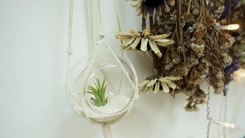【觀塘好去處】觀塘植物盆栽掛飾DIY工作坊 自製簡約家居裝飾送禮/自用