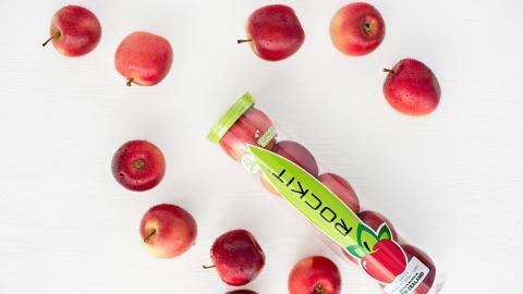 兩種經典蘋果培植成新品種紐西蘭樂淇蘋果!香甜/營養價值高/迷你方便/免洗即食