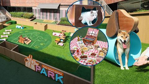 【沙田好去處】全新寵物同樂園登陸沙田新城市廣場!7大放電設施/貓咪樹屋/戶外野餐區
