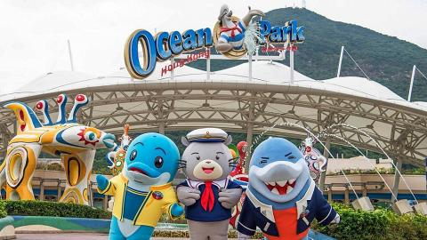 【海洋公園優惠2021】香港海洋公園門票優惠比較+預約安排 入場門票6折/港人生日優惠免費/年票
