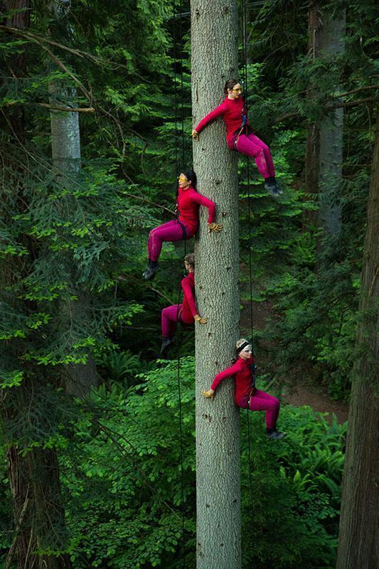 世界級高空舞團Aeriosa Dance Society (Nicolas Podbrey攝)