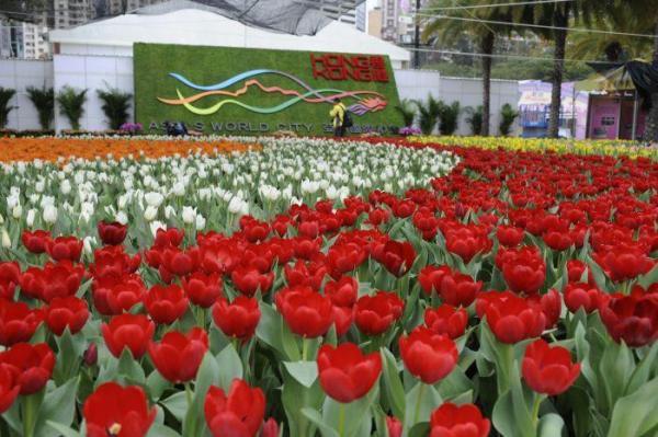 香港花卉展覽 2015 圖片來源:康樂及文化事務署官網及互聯網