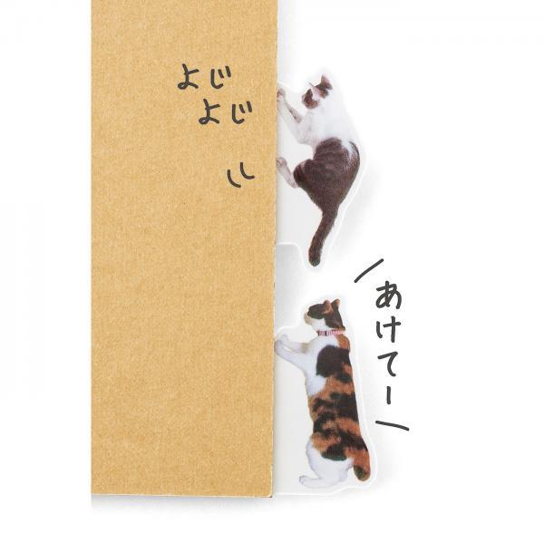 可愛又實用!2款貓貓雜貨