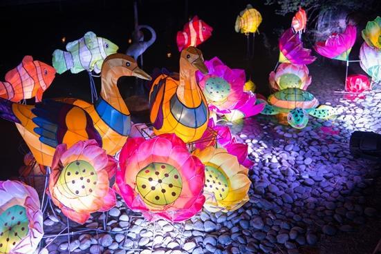 新界西中秋綵燈會20166(圖為2015年相片)
