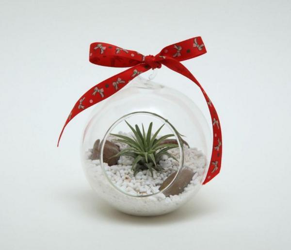 「迷你空氣草」聖誕擺設