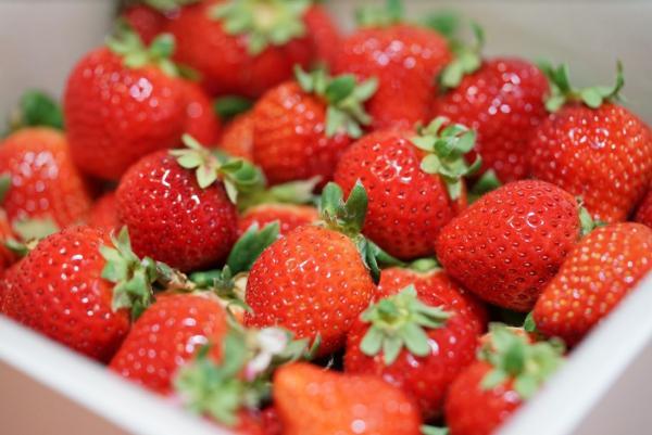 夢幻草莓花束!THE ONE白色情人節限定美食市集