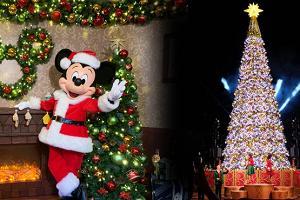 迪士尼樂園聖誕嘉年華率先睇|龍貓主題樂園登陸沙田