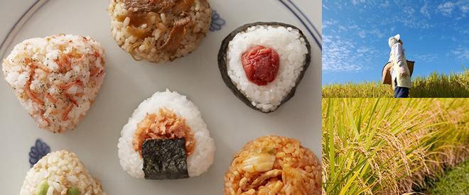 野餐食物:日式飯團 / 便當 (華御結)
