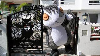 Dayan Resort Lamma Island 達洋貓主題渡假酒店