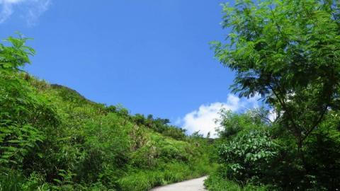 【登山】屯門後花園。香港小峽谷