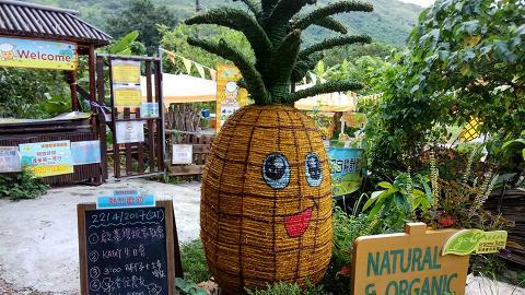 【元朗好去處】元朗10萬呎菠蘿園農莊!包BBQ露營8大玩樂設施
