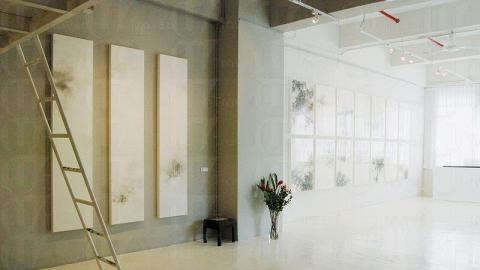 Blue Lotus Gallery