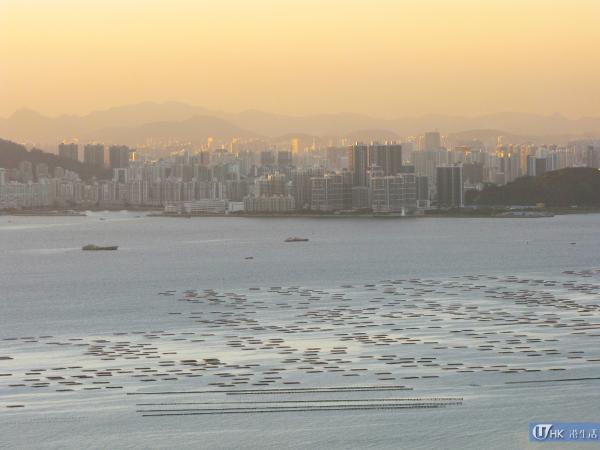 可以看到深圳灣的景致