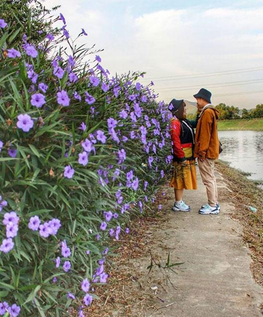 古洞雙魚河(圖:#uhkphoto投稿/IG@hellowaiie)