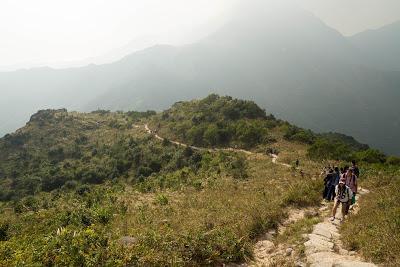 【香港隨行】大東山攻頂!為了賞芒草你可以爬上多少個山頭?