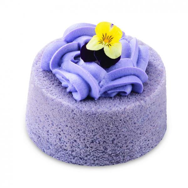 Maxim's Cake Lab