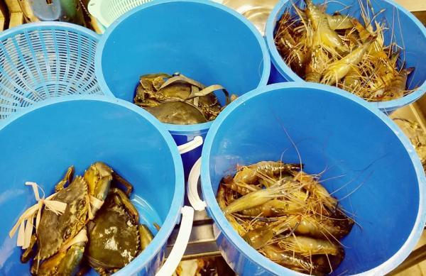 觀塘釣蝦場生日限定優惠 三小時免費釣蝦+送蛋糕