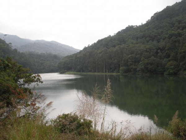 流水響水塘,環境清幽,是周末休閒好去處。