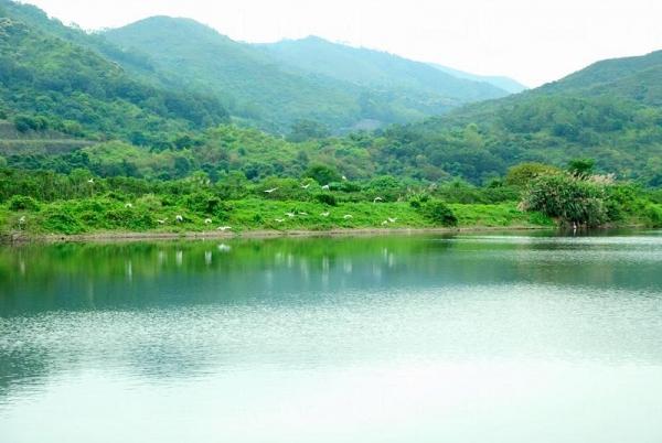 茶座附近風景優美。