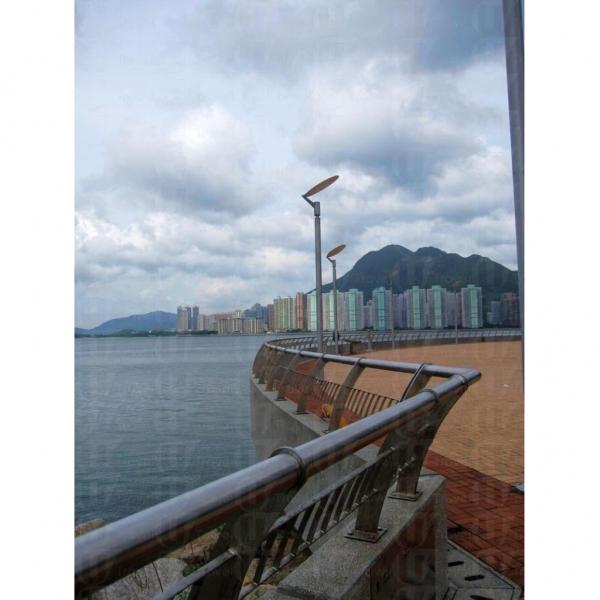沿白石角海濱長廊,遊客可欣賞到吐露港海色。
