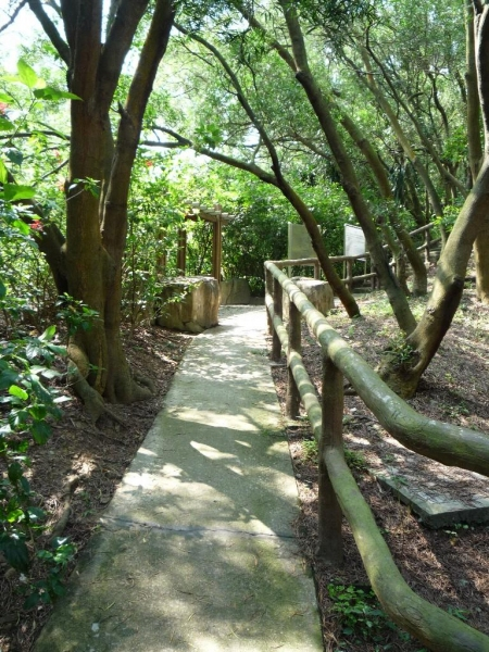 青衣自然徑樹木林蔭,漫步於其間確能洗刷一身塵囂。(相片來源:Clara Lee)