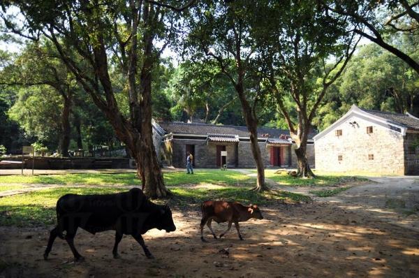 圓墩古村是法定古蹟。