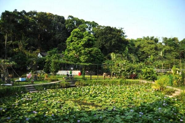 清快塘村的喜香農莊成了一個雅緻庭園。
