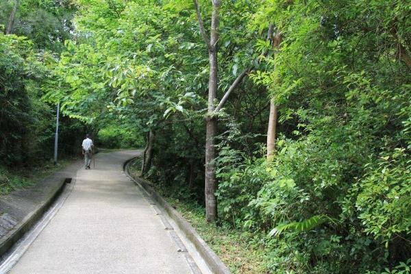 蝴蝶山徑適合喜愛登山的初階人士。