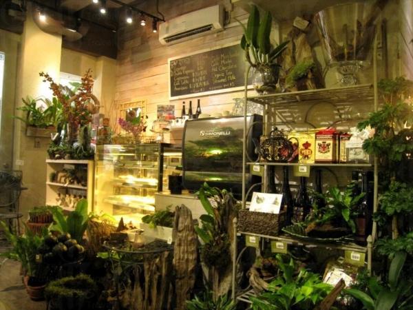 店內亦放滿盆栽。