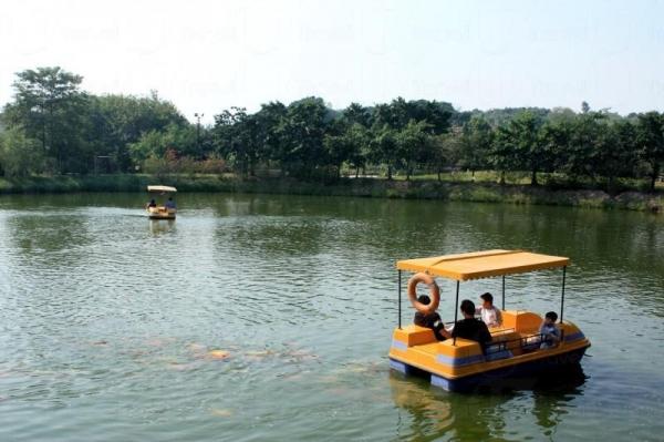 難得在香港泛舟湖上。