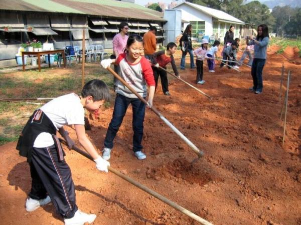 一家大小一起參與田間的工作,享盡天倫之樂。