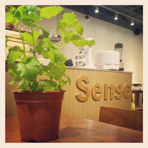 Sense Dessert Cafe 主打分子甜品,其中一大賣點是部份甜品會配上「奇異果蛋白粉」(Miracle Fruit Powder),吃下會使舌頭比較不敏感,令味覺有新體會