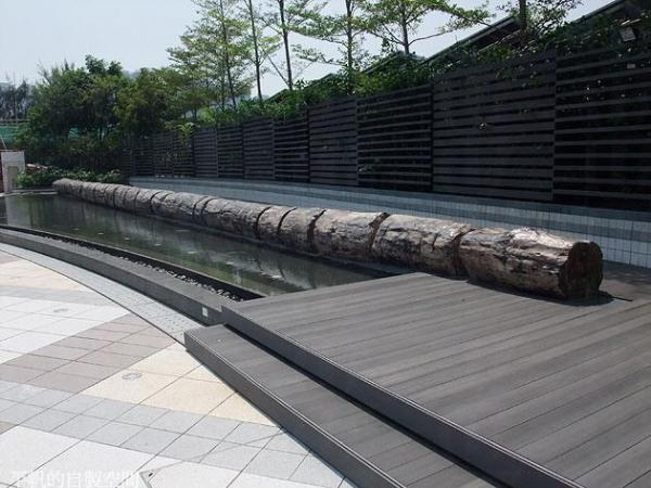 如心化石公園當中最搶眼的是兩個分別來自印尼及南美的百呎長木化石 (網上圖片)