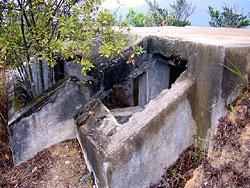 孖指徑的堡壘(漁農處圖片)