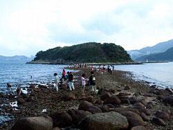 連島沙堤(漁農署圖片)