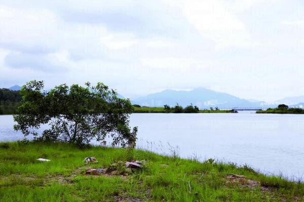 南丫島人工湖。