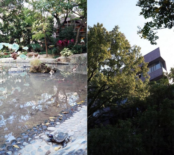 港大蒙國平花園