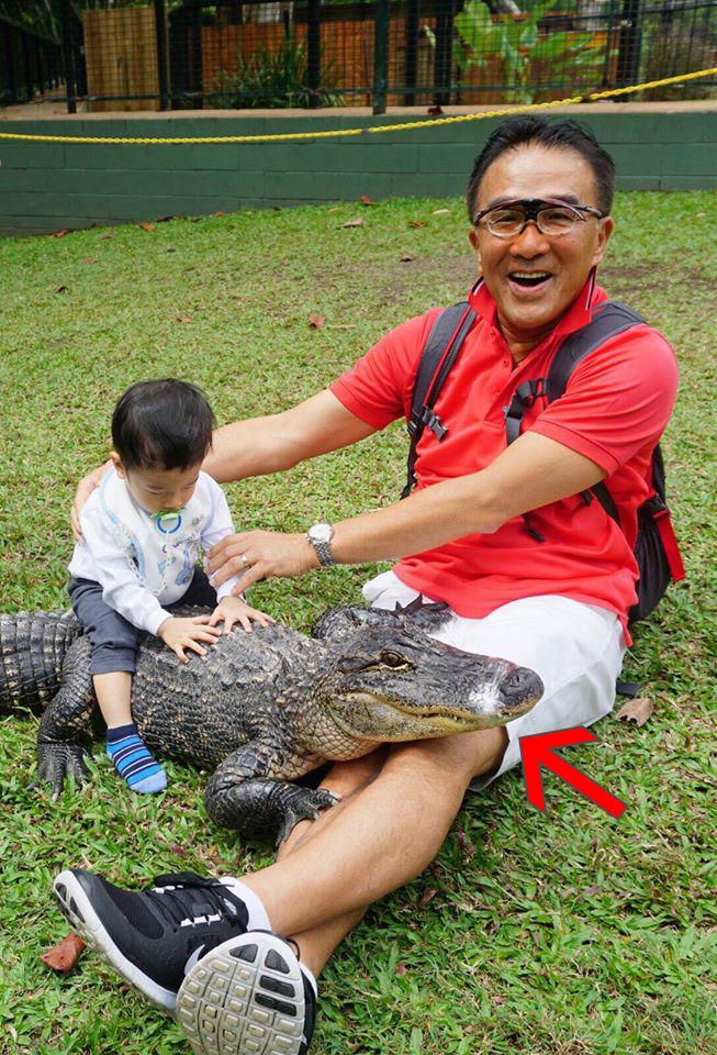 田北辰膠紙封鱷魚嘴 被指虐待動物