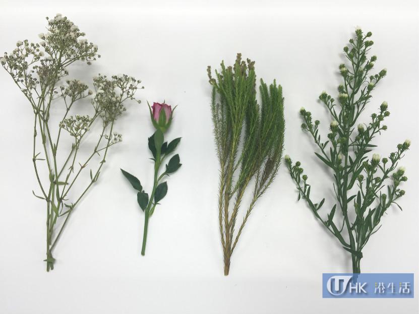 簡單自家製乾花!倒掛法、微波爐烘乾法測試報告