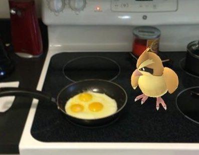 香煎鯉魚王!Pokemon融入現實生活爆笑圖集