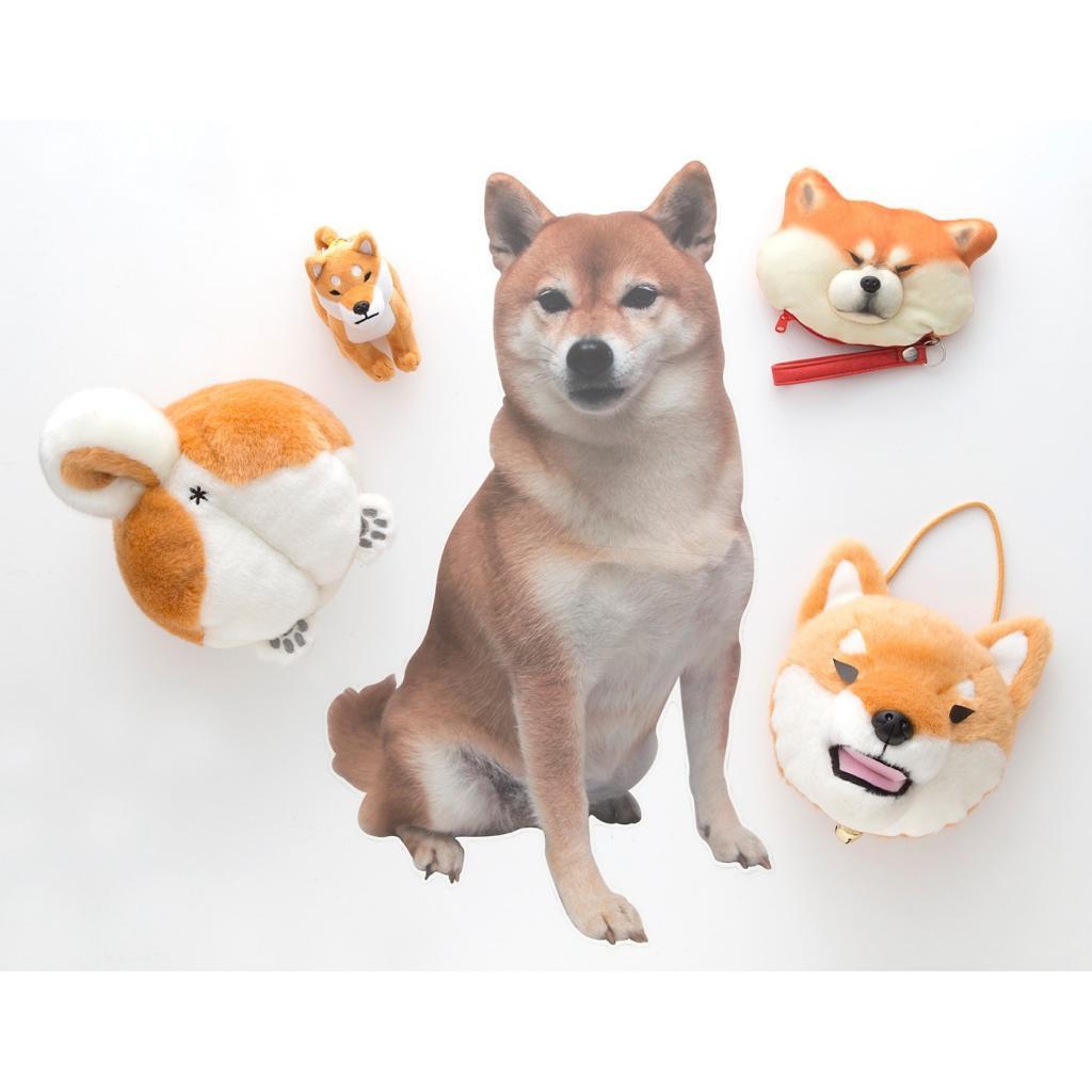 香港買得到!4款日本人氣動物收納袋