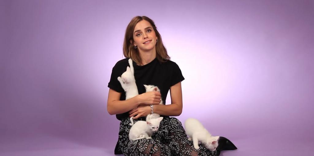 女神Emma遇上喵星人 網友:我都想變成隻貓呀!