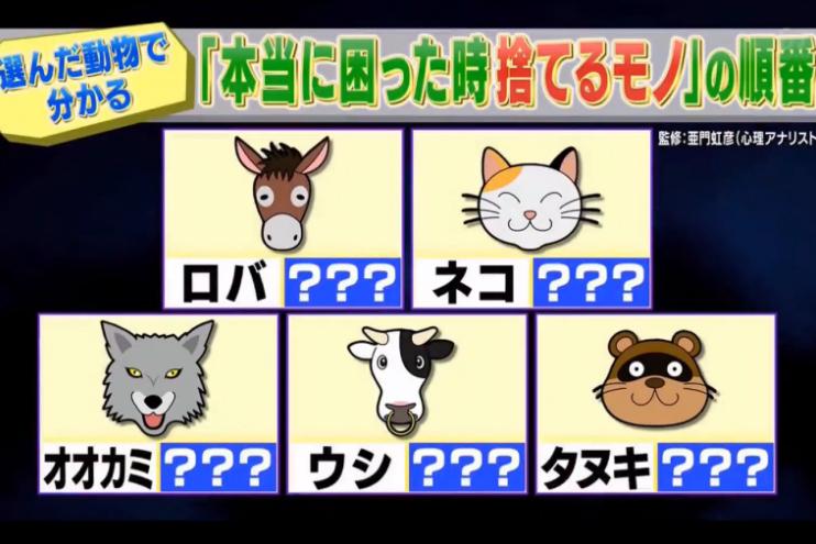 睇穿你人生最重視的事 日本瘋傳超準動物心理測驗