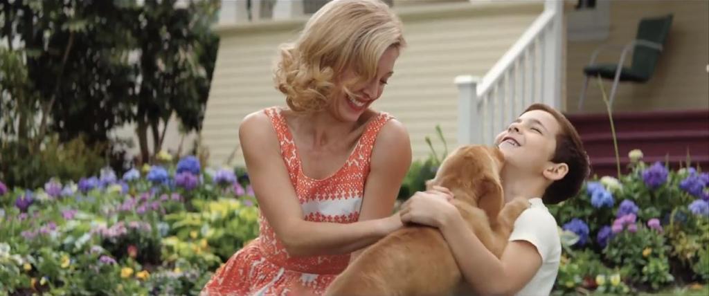 狗狗經歷4次輪迴 第一人稱描述與人類真摯情感